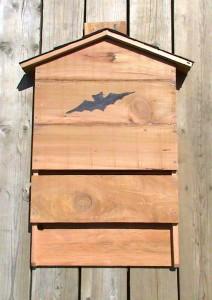 Bat habitat