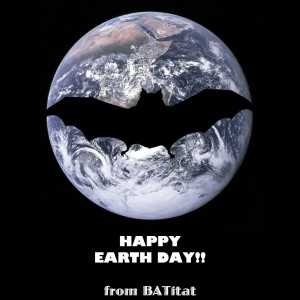Bat on the Earth